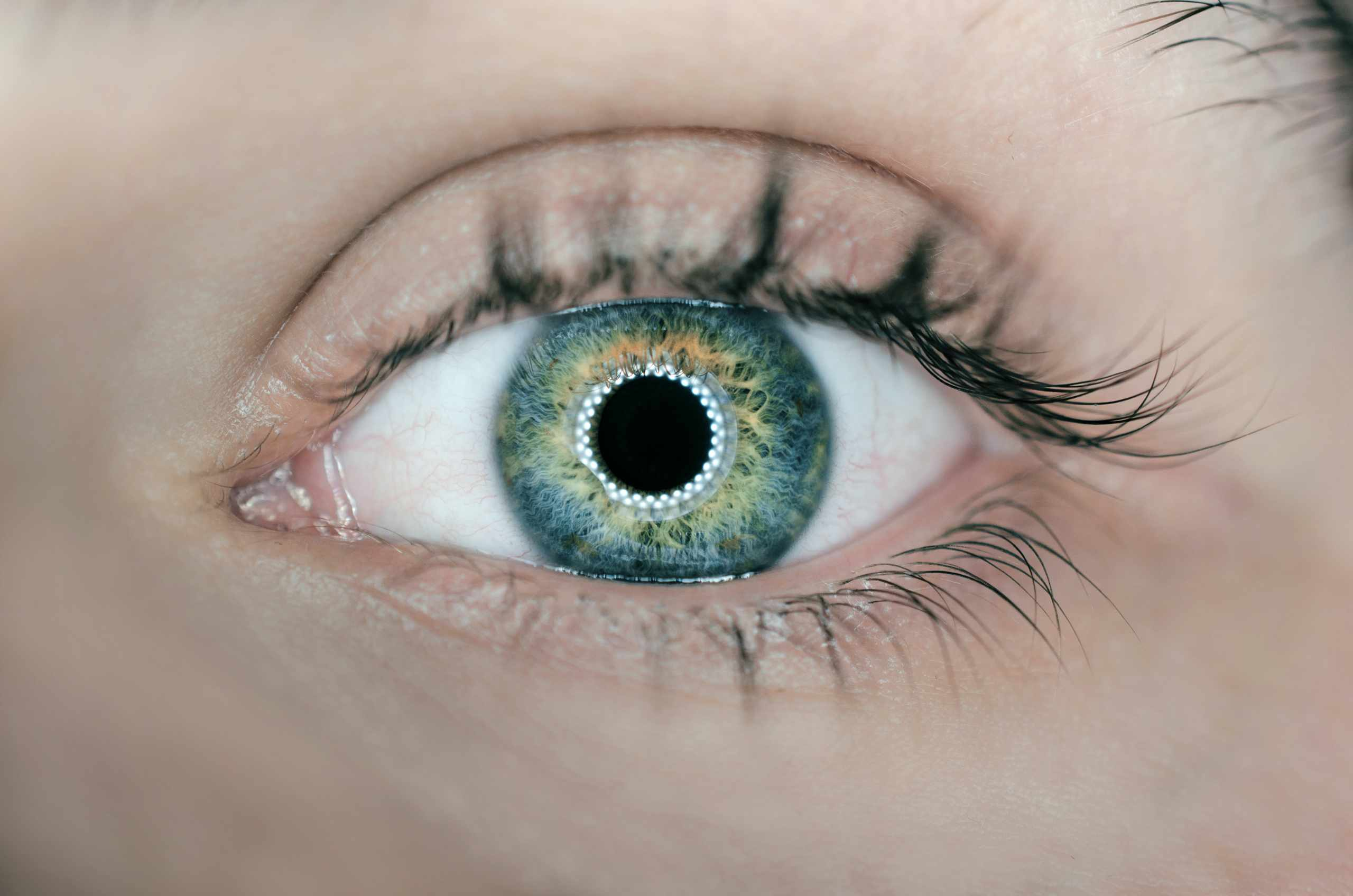 Gucci Eye Ware